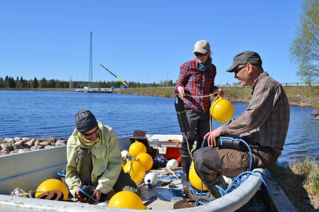 Voimlaitoksen yläkanavalla kolme henkilöä valmistelemassa kalojen tutkimusvälineistöä, kesä, kirkas ilma.